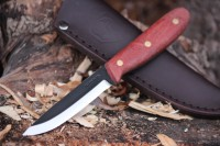 Condor Knives Sapien Photo