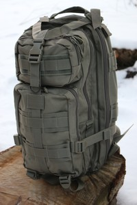 Transport Backpack Foliage Green Photo